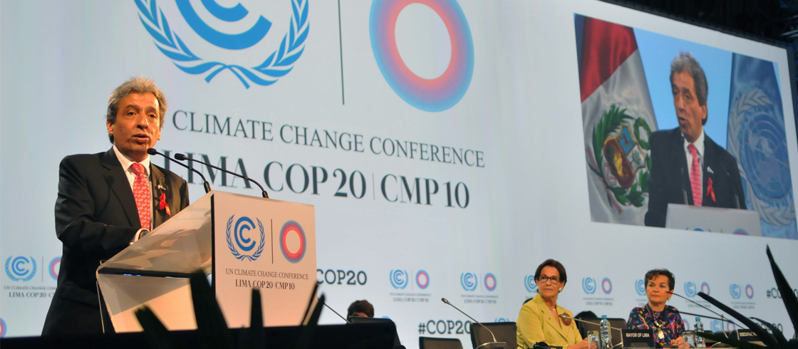 COP20: Is Voluntary Action the New Normal?