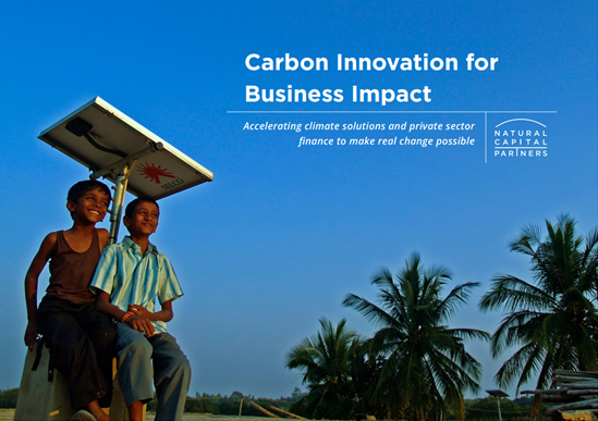 Two boys sat under a solar panel, blue sky and palm trees. Text saying Carbon Innovation for Business Impact