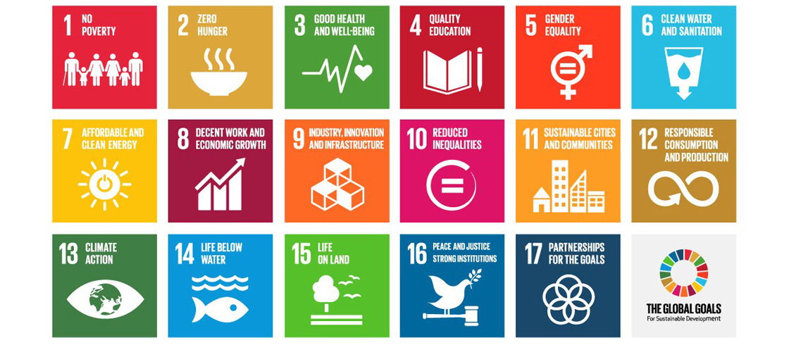 Going Beyond Carbon to Integrate Sustainable Development Outcomes