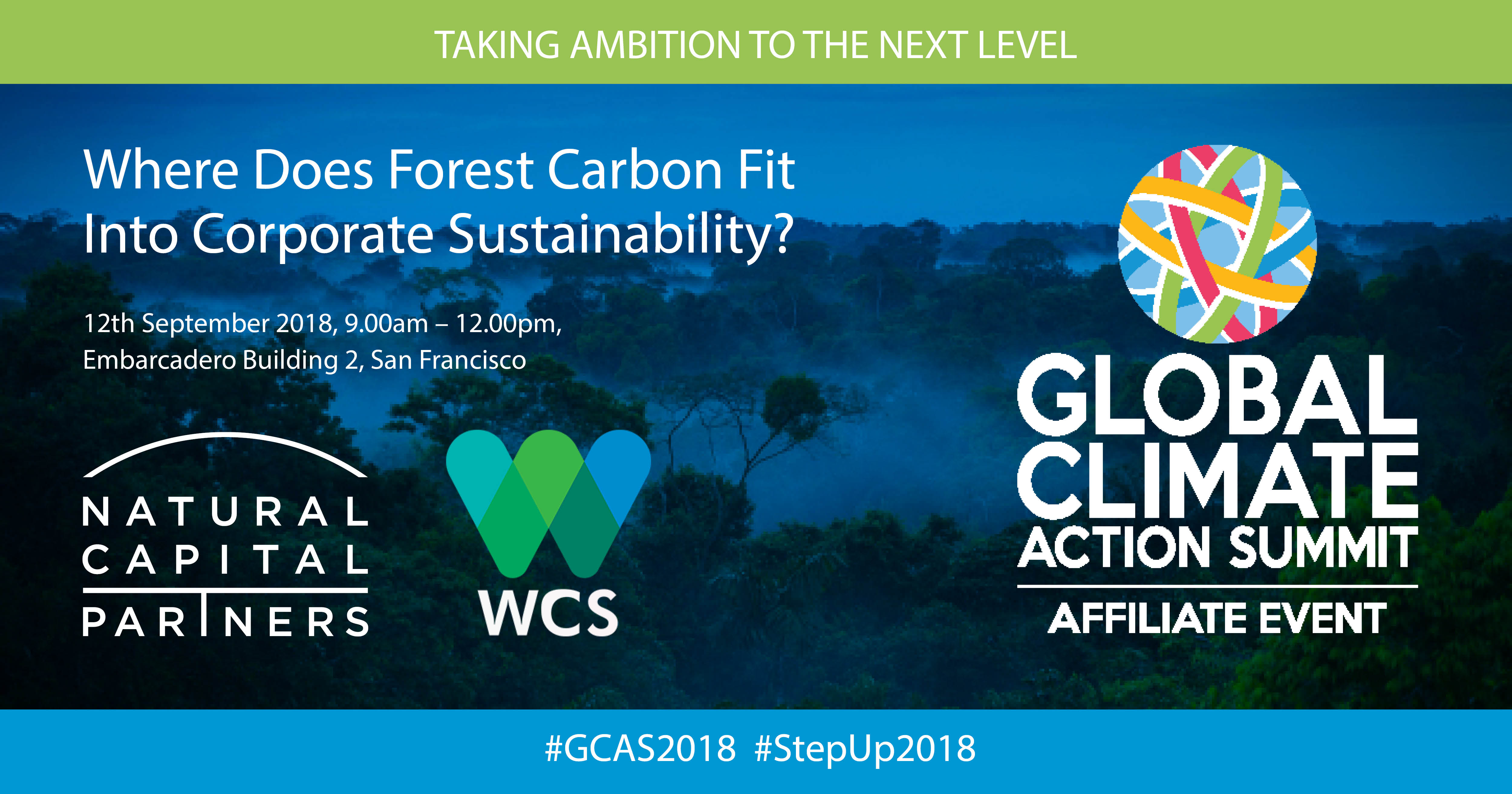 Where Does Forest Carbon Fit Into Corporate Sustainability?