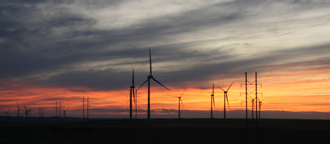 Accessing Renewable Energy to Decarbonise Your Business – How Can it Be Done?