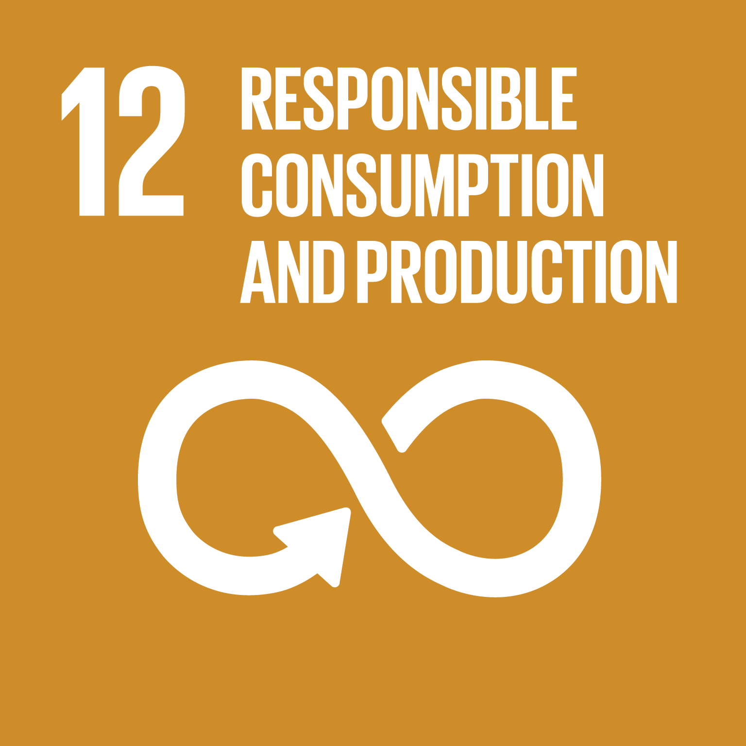 12 responsible consumption and production natural capital partners